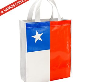Eco Flag Medium Bag 25 x 30 x 8 cm.