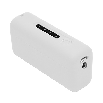 POWER BANK FLORIDA